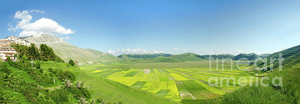 cultivated fields of Pian Prande of Castelluccio di Norcia Perugia by Luca Lorenzelli