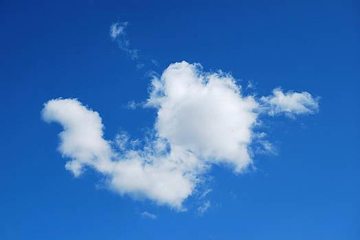 Cumulus by Marilynne Bull