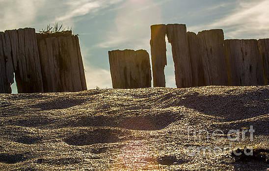 Marc Daly - Cunnigar beach wooden barrier