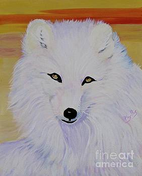 Cunning Fox by Phyllis Kaltenbach