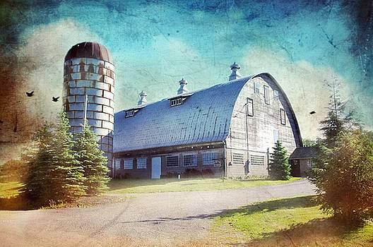 Cupolas On Round Top Barn by Stephanie Calhoun
