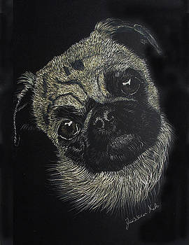 Curiosity of the Pug by Jessica Kale