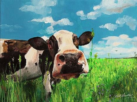 Curious Cow by Bill Dunkley