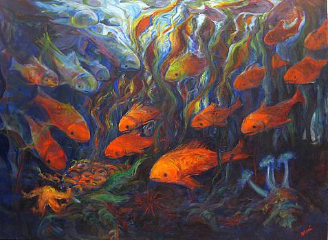 Curious Fish by Nanci Cook