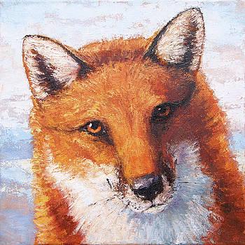 Curious Fox by Tracie Thompson