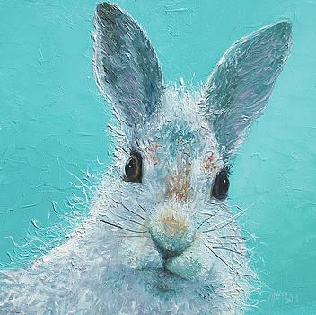 Jan Matson - Curious Grey Rabbit