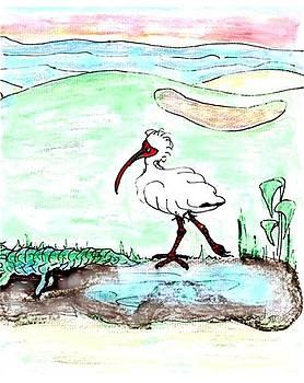 Curious ibis stands by by Carol Allen Anfinsen