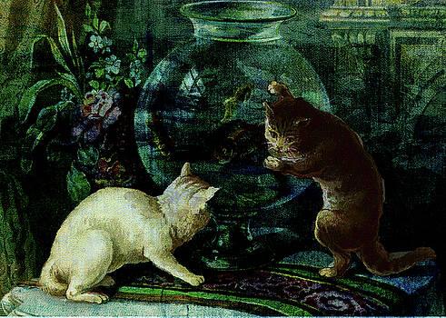 Curious Kittens by Sarah Vernon