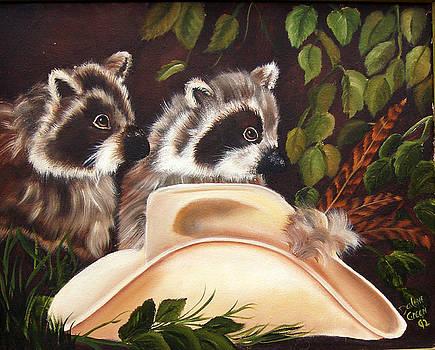 Curious Raccoons by Darlene Green