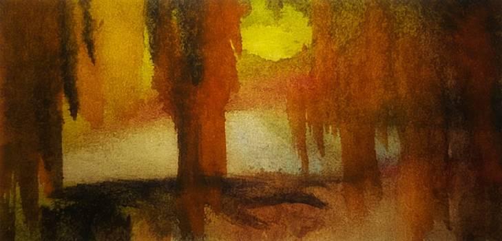 Curious Sun by Madina Kanunova
