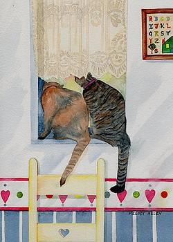 Curiousity by Melody Allen