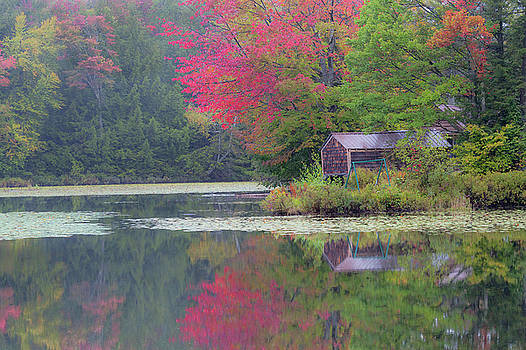 Curtis Pond Misty Autumn by Alan L Graham