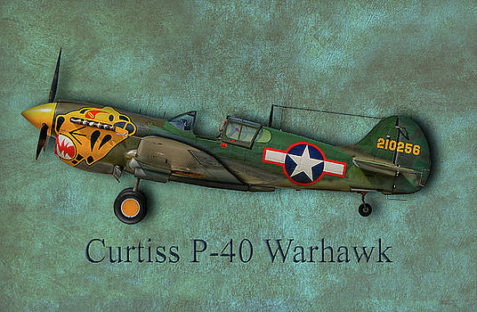 Robert Hayes - Curtiss P-40 Warhawk
