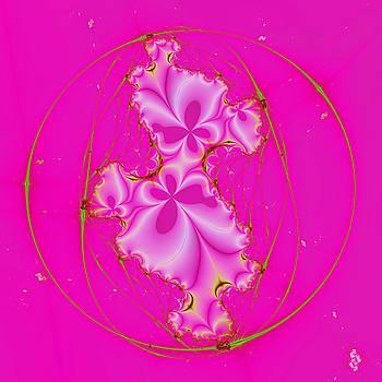 Curvilinear Aberration by Peter Ludwig Wegener