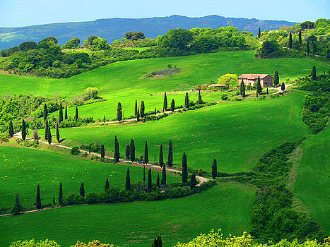 Dennis Cox WorldViews - Curving Tuscan Road