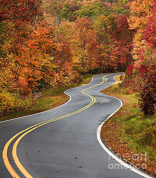 Jill Lang - Curvy Road in the Mountains