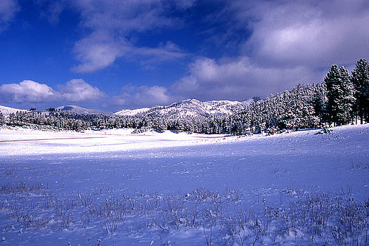 Custer State Park by Barry Shaffer