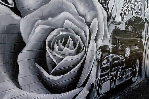 Guy Shultz - Custom Desert Rose
