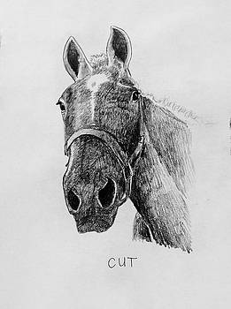 Cut The Horse by Larry Whitler