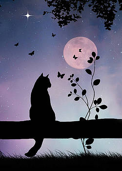 Cute Cat and Butterflies in Full Moon by Stephanie Laird