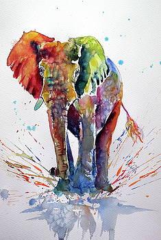Cute colorful elephant by Kovacs Anna Brigitta