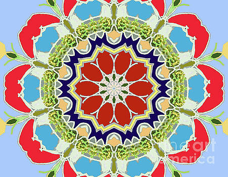 Cute Red Flower by Shirley Moravec