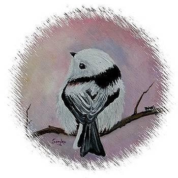 Cutest Bird Ever by Sandra Maddox