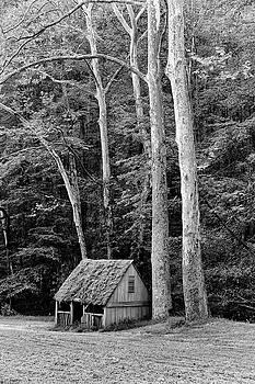 Cuttalosa Spring House by David Oakill