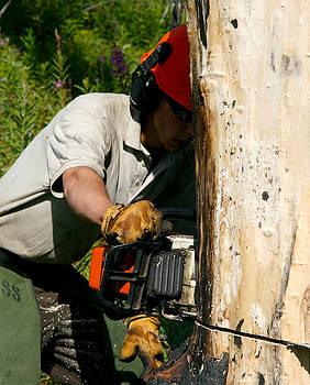 Cutting Down Tree by Wyatt Rivard