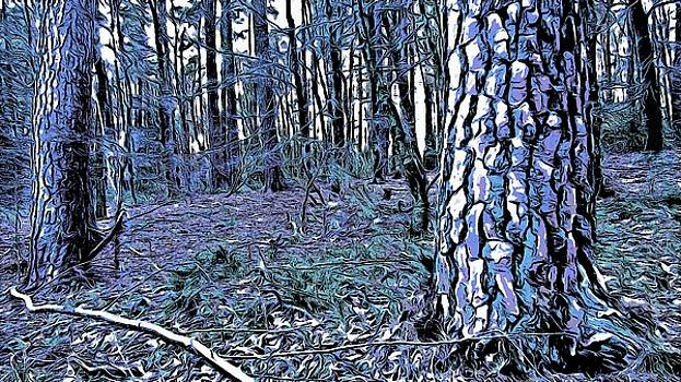 Cyan tainted forrest by Marco De Mooy