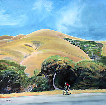 Cyclist by Elephant Mountain by Colleen Proppe