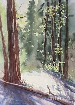 Cypress Mt. by Yohana Knobloch
