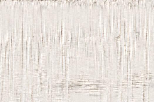 Cypress Reflection Wallpaper by Charlotte Schafer
