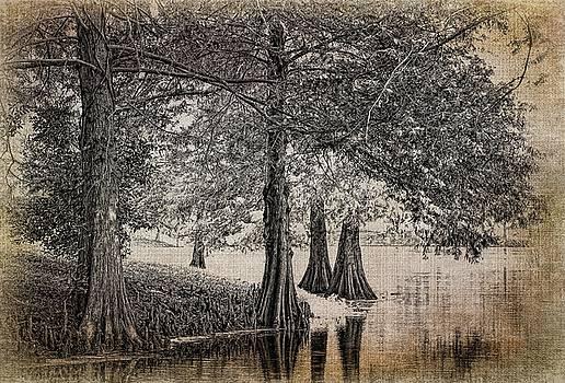 Cypress Retreat by Pete Rems