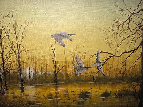 Cypress Waters by Betty Reineke