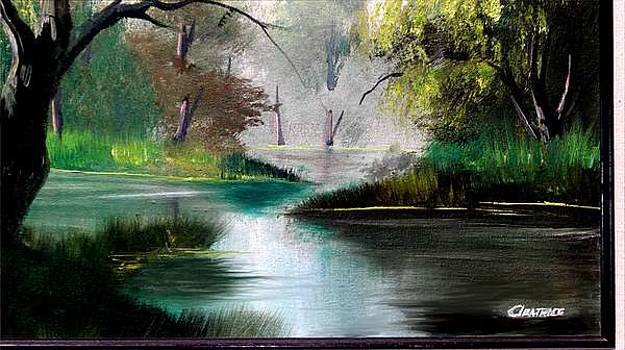 Cyprus Creek by Cleautrice Smith