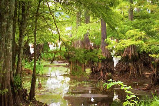 Cyprus Swamp Digital Painting by Deb Henman
