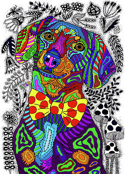 Dachshund by ZileArt