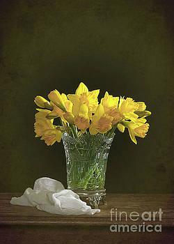 Daffodil Still Life by Amanda Elwell