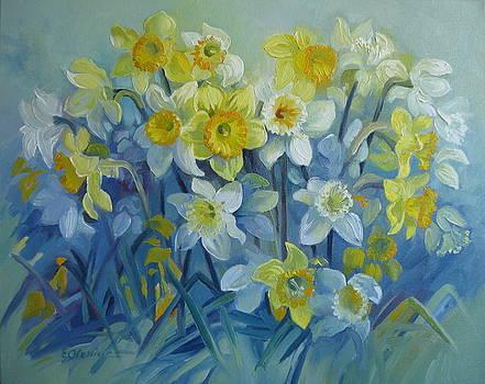 Daffodils dance by Elena Oleniuc