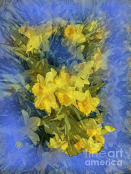 Daffodils by Dominique Fortier