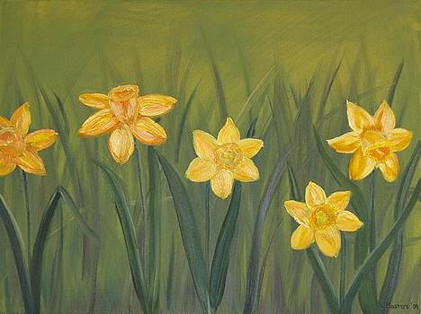 Daffodils by Karen Masters