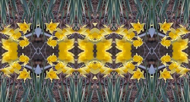Daffodils by Keri Renee