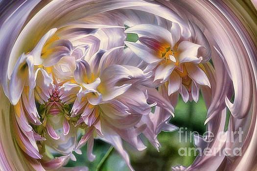 Dahlia Ecstasy by Mary Lou Chmura