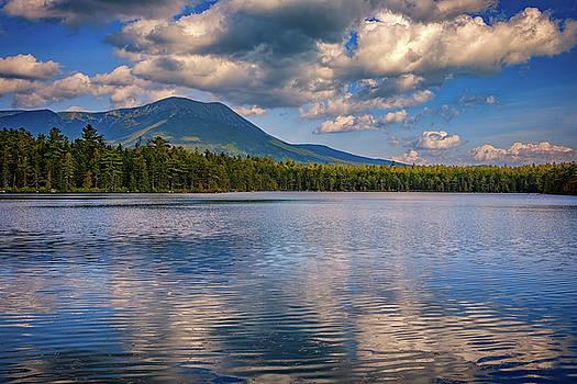 Daicey Pond by Rick Berk