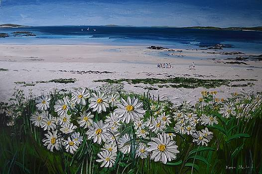 Daisies Connemara Ireland by Diana Shephard