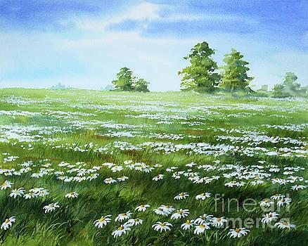 Daisies Field by Varvara Harmon