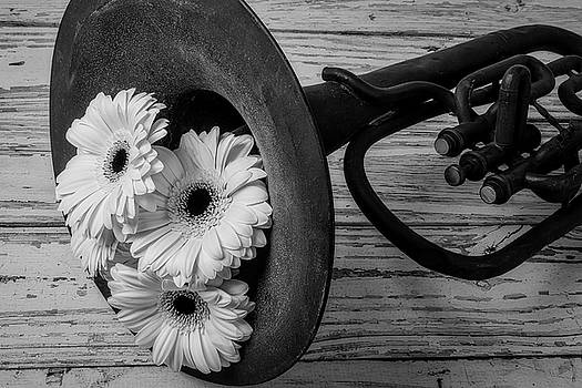 Daisies In Tuba In Black And White by Garry Gay