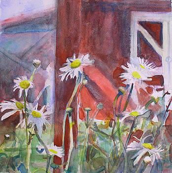 Daisy 1 by Marty Smith