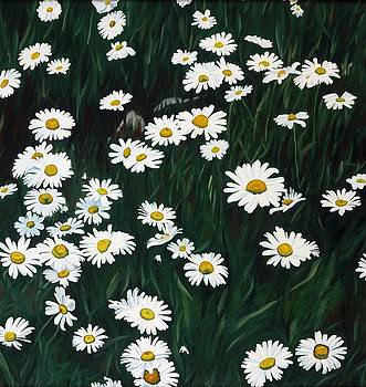 Daisy Bouquet by Phil Chadwick